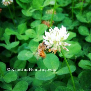 Bee_KristinaHenningJewelry